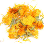 Calendula_Flowers_Whole