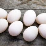 duck egg on wooden