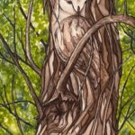 Julie+Owl (1)