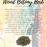 Wood Betony Herb